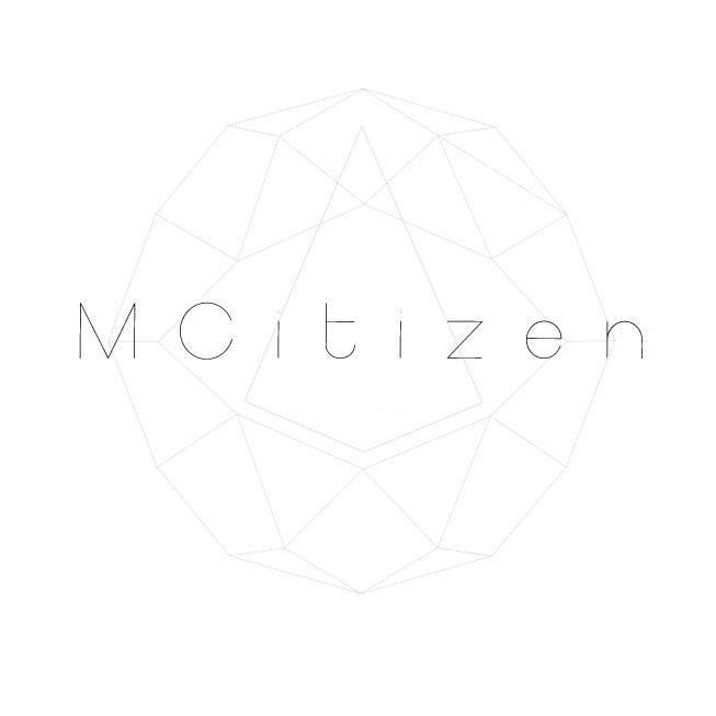 lmictizen-logo