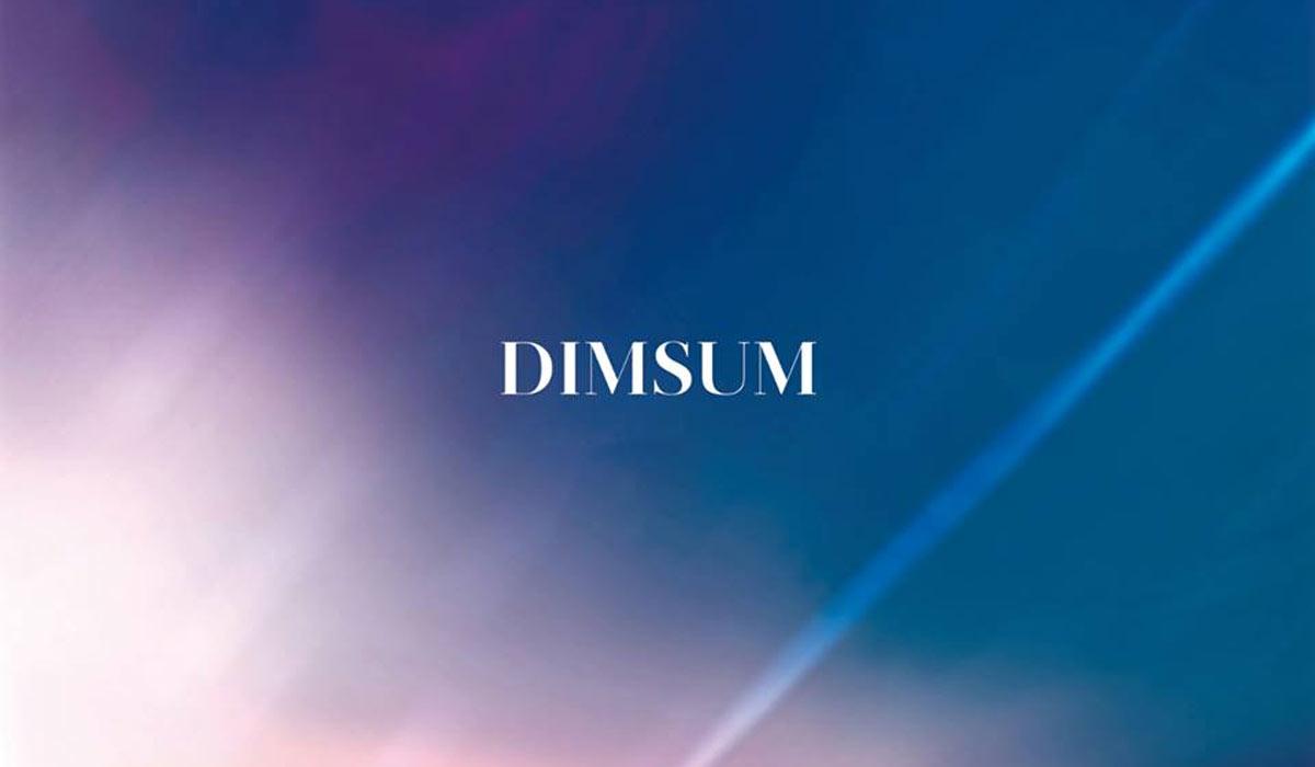 Nouveau morceau du français Dim Sum : Stay.