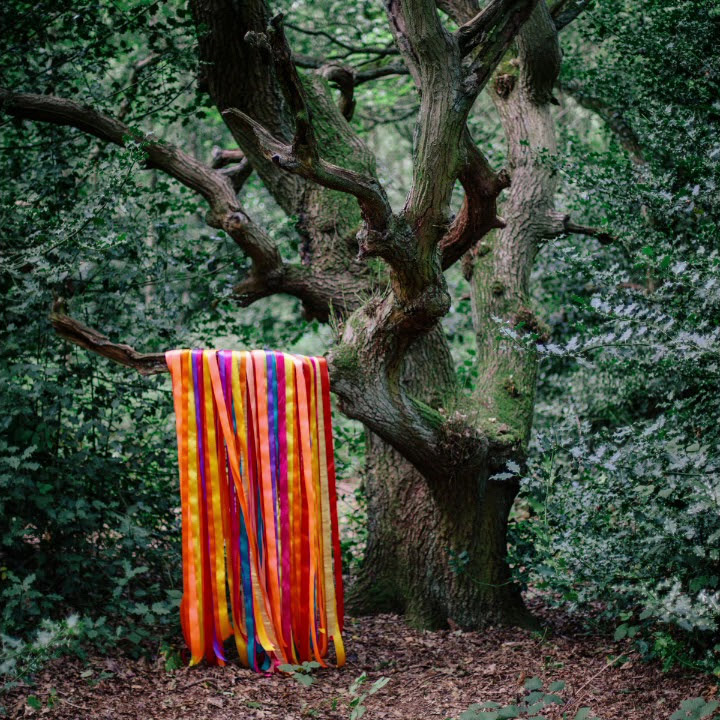 The Animal Spirits de James Holden